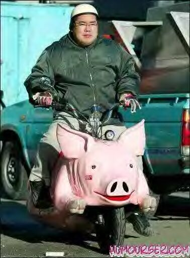 SCOOTER COCHON