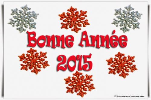 Message_Bonne_Ann_e_2015_.jpg