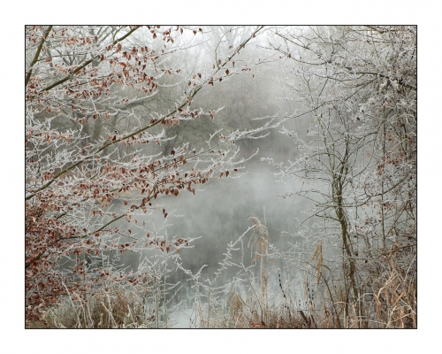 paysage-givre-hivernal-01.jpg