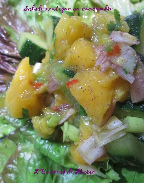 salade exotique (2).JPG