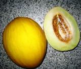 melon-canari.jpeg