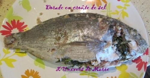 dorade crout sel (5).JPG