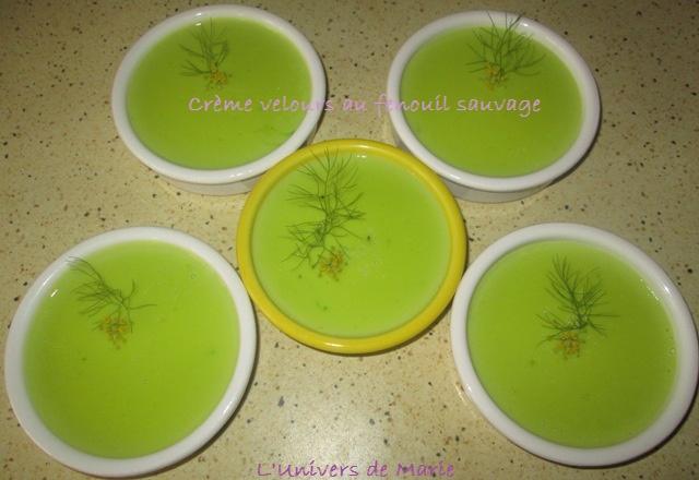 crème fenouil sauvage (1).JPG