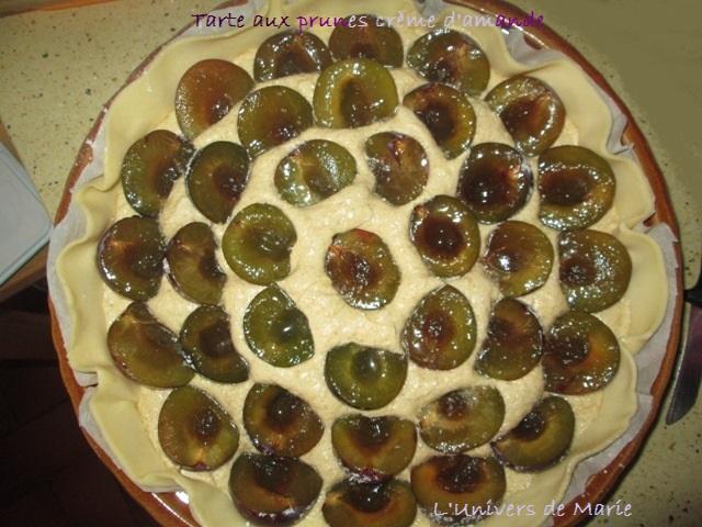 tarte aux prunes crème amande (1).JPG