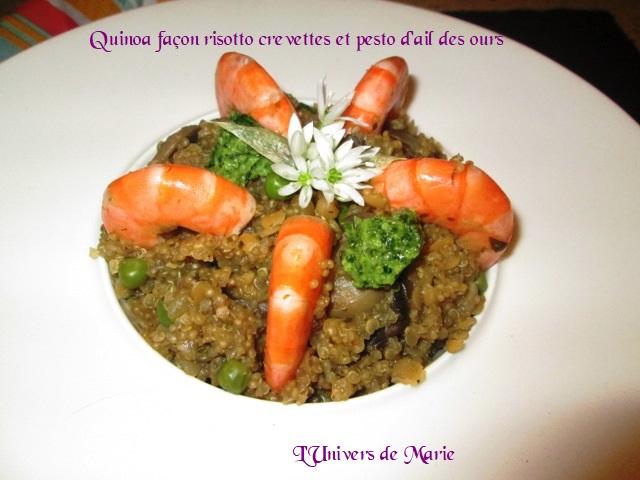 quinoa risotto ail de o et crev (2).JPG