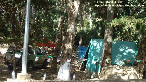 Camping  dans  la  foret  de  la  Baie  Ouest