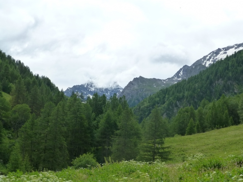 2014 07 22 le belvedere du viso Ristolas (12).JPG