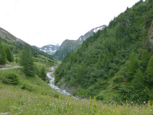 2014 07 22 le belvedere du viso Ristolas (14).JPG