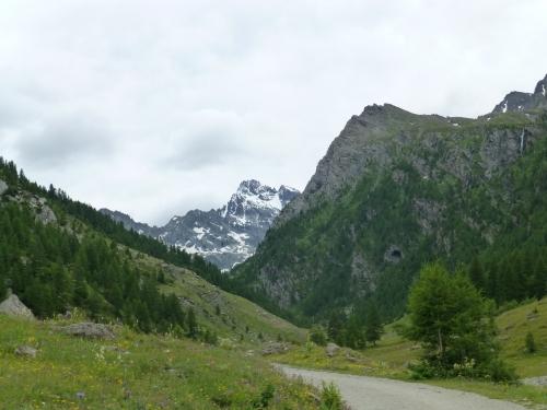2014 07 22 le belvedere du viso Ristolas (16).JPG