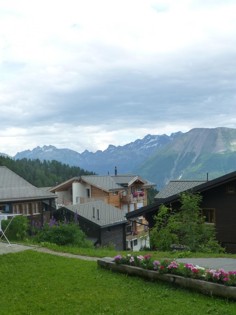 le glacier d'Aletsch (53).JPG