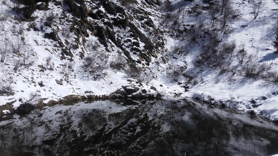 le lac d'Armancette (13).jpg