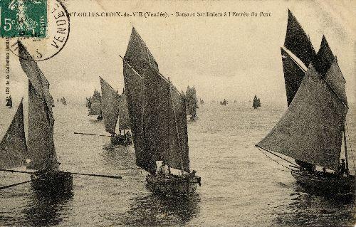 Chaloupes sardinières entrant au port