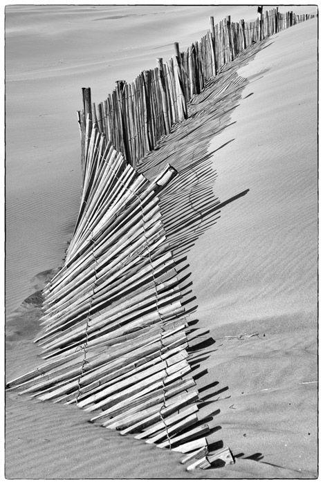 Canivette  (photo qualifiée en national 2)