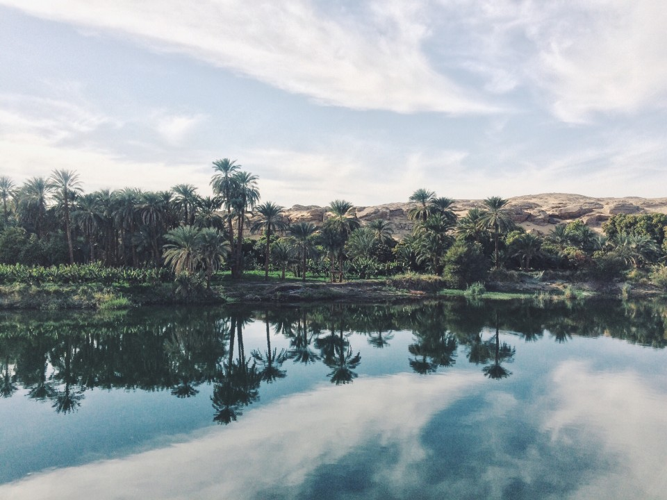 Des dunes  de Sable - Des palmeraies  - Les Rives du Nil.jpeg