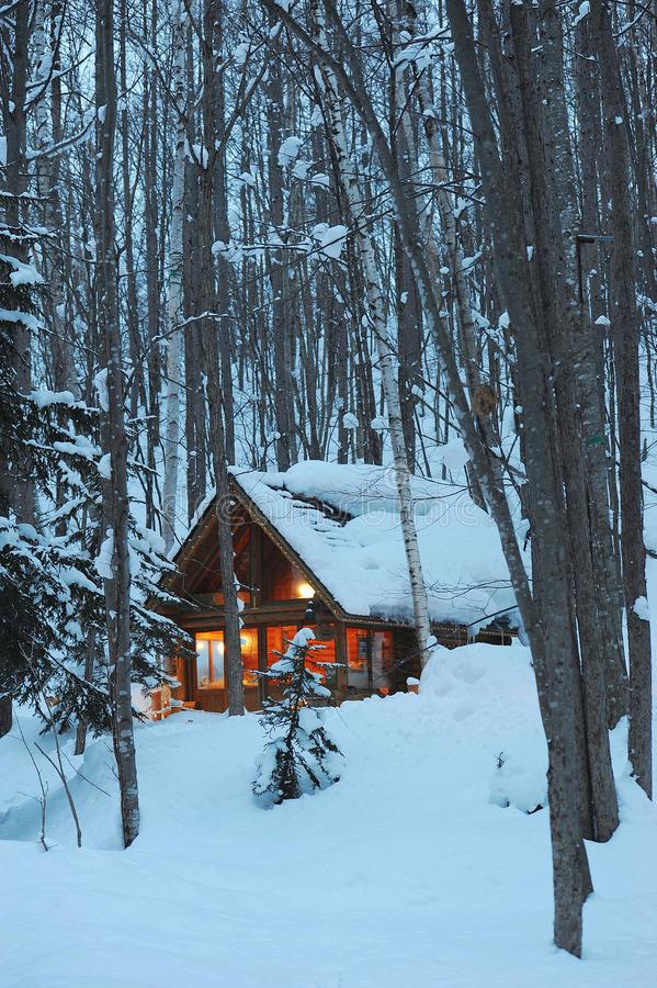 une-petite-maison-en-bois-dans-la-forêt-de-neige-68102833