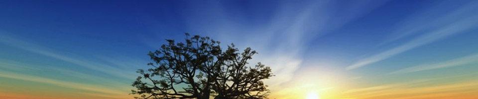 Yoga & Méditation - Spiritualité bien-être