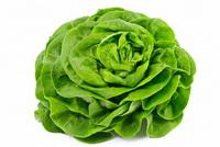 Salade Verte.jpg