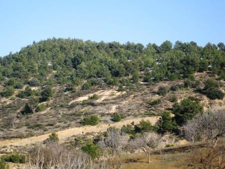 Ouled Ali et son paysage