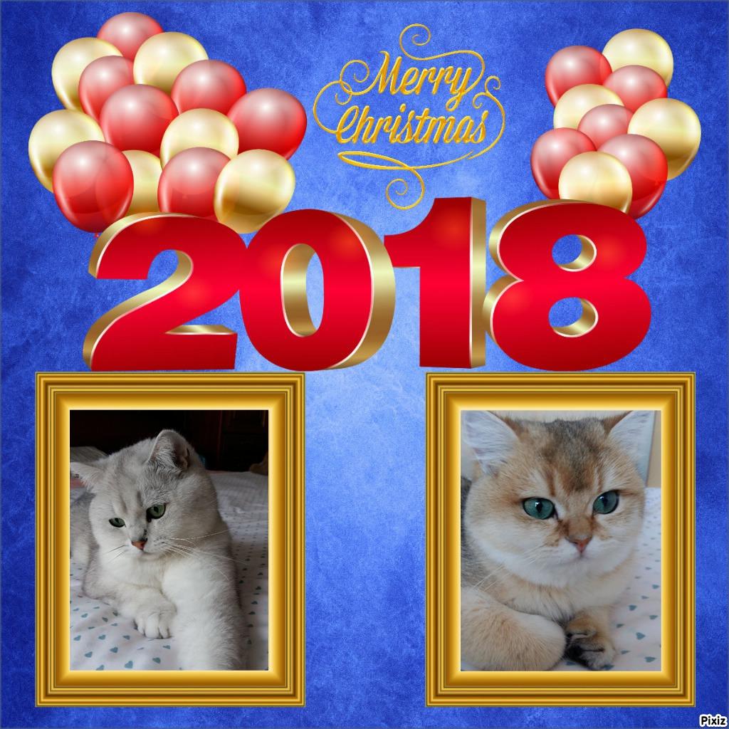 Bonne Année 2018 02.jpg