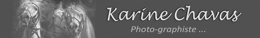 karine-chavas.blog4ever.com