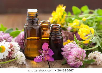 huile essentielles.png