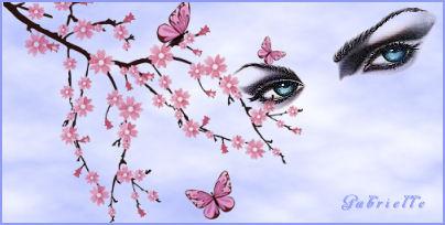 01 le cerisier fleurit.jpg