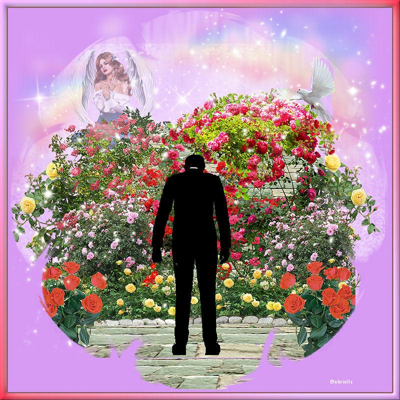 01 sur le chemin de tes roses.jpg