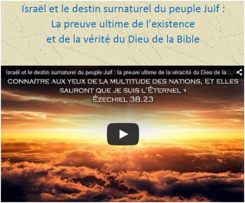 15 Vidéo artfichier_361791_4654134_201503134407771.jpg