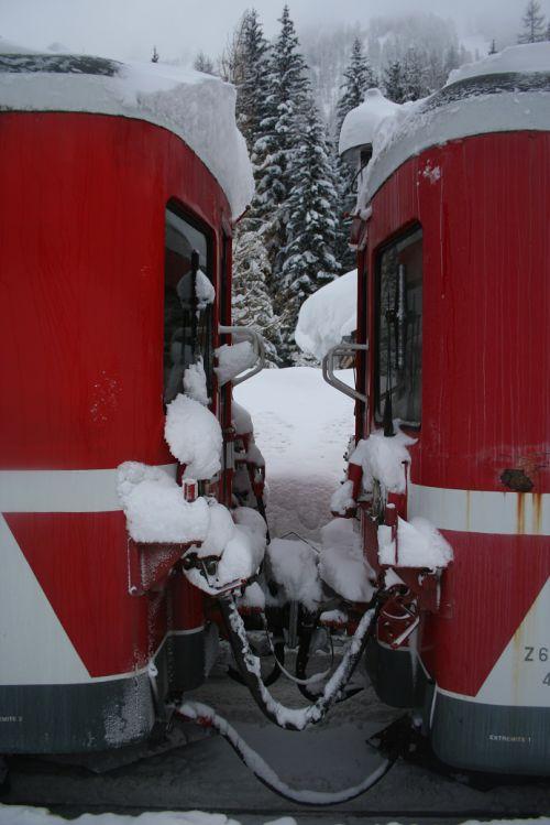 2012.01.31 Neige et Z 600