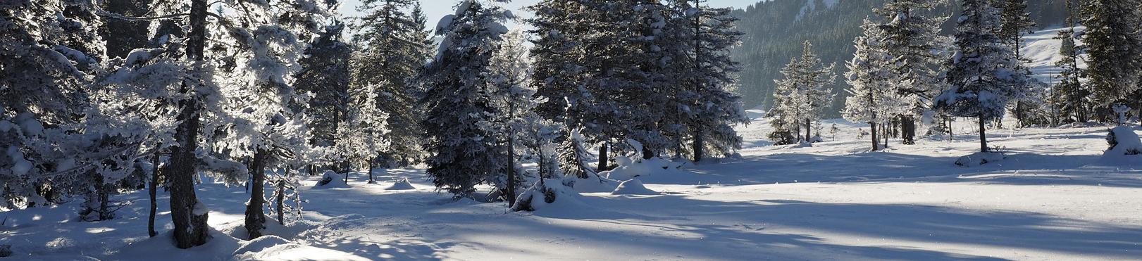 Montagne aventure - Sylvain Poncet - Alpes / Jura / Etranger