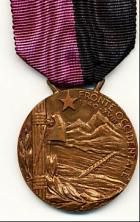 Medaglia commemorativa della battaglia del Fronte Alpino Occidentale