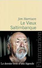 CVT_Le-Vieux-Saltimbanque_9897.jpg