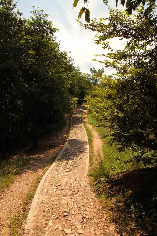 collines au dessus d'HZ-24-09-13 - 14837.jpg