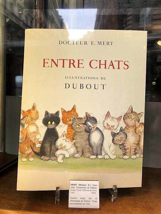 MERY - Entre chats.jpg