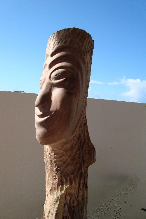 homme du désert (faux Gaïac)