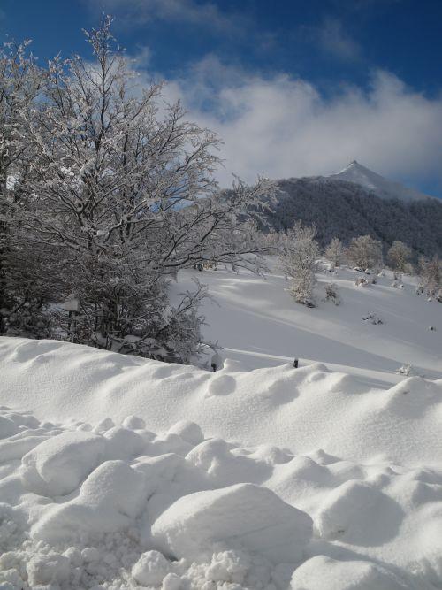 Nuage ou neige ?