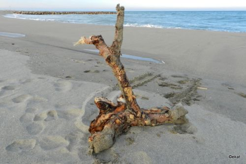 Sur la plage abandonnée...