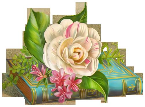 bible-et-rose.png