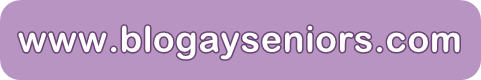 www.blogayseniors.com.png
