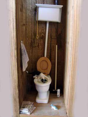 Les toilettes au fond du jardin...