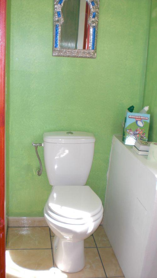 Des WCs à part avec tablette-lecture et fenêtre particulière !