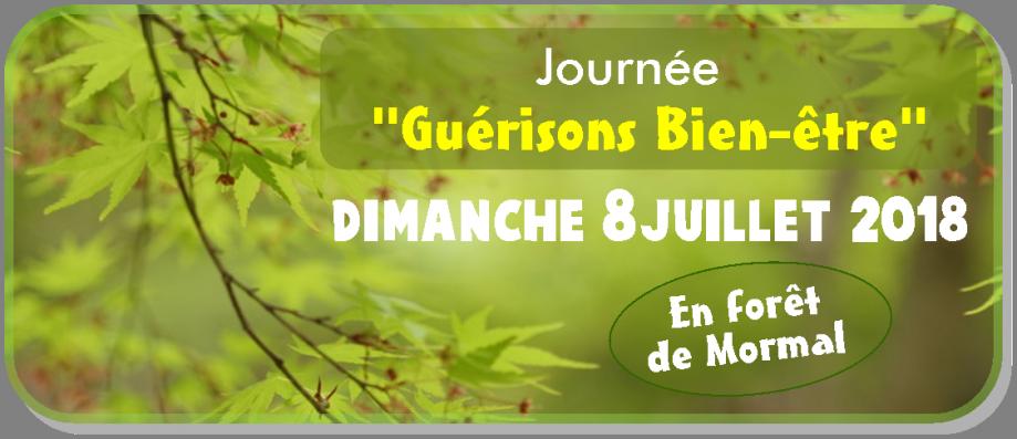 IM - Journée Guérison Bien-être 2.png