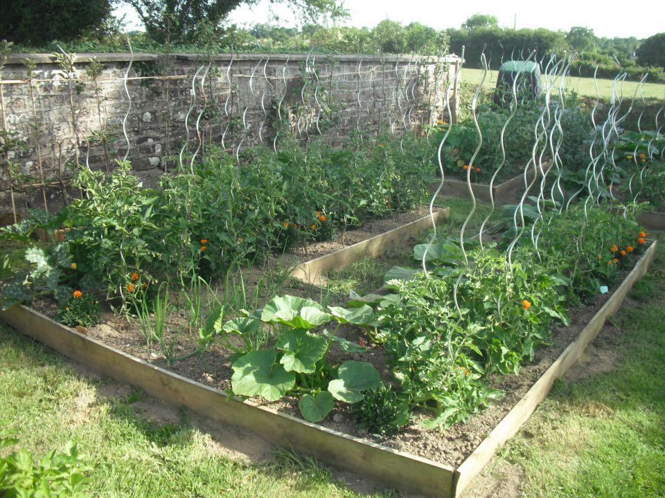 Les jardins de l'ouest (le blog de la famille)