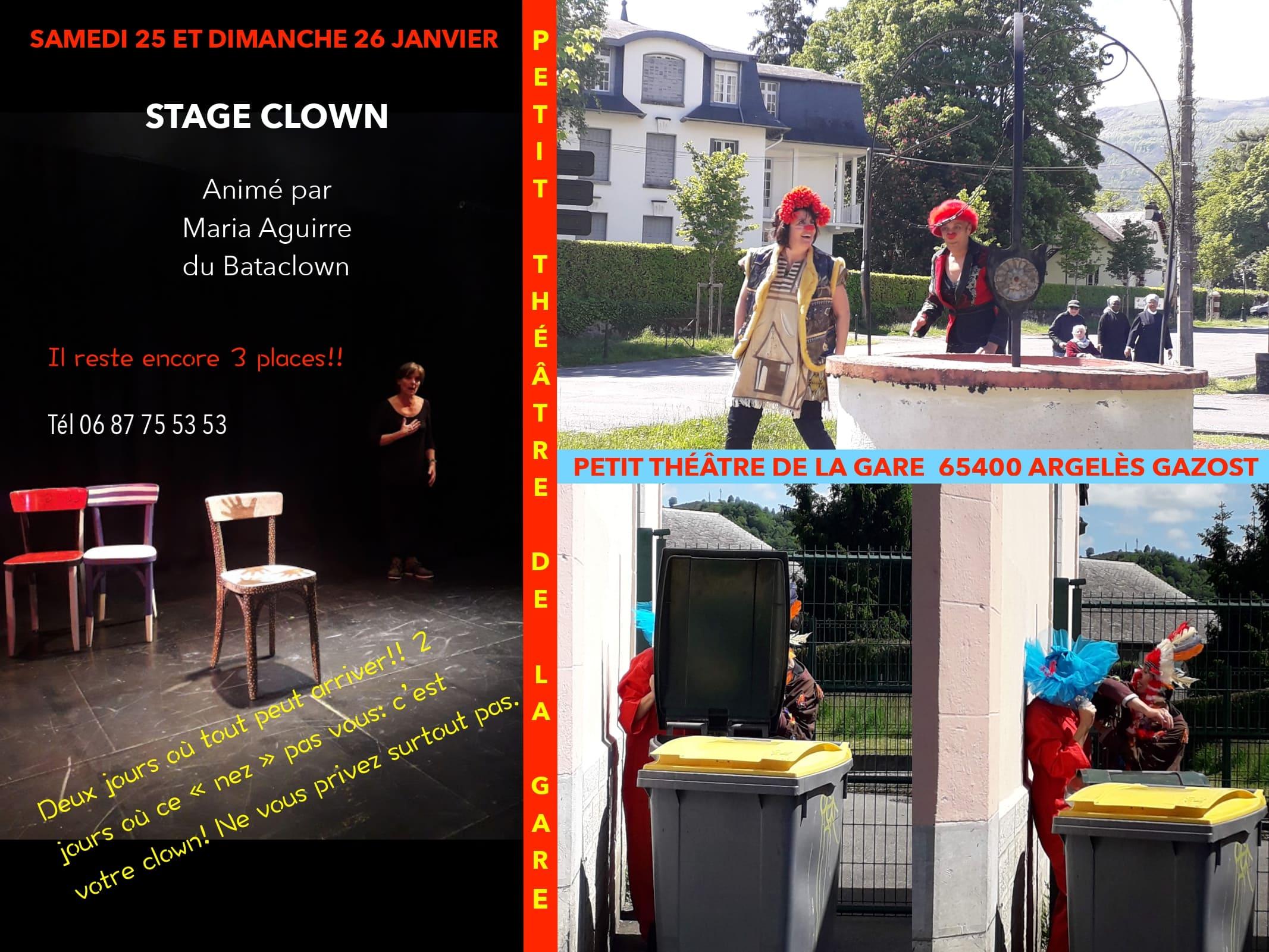 Stage clown2020.jpg