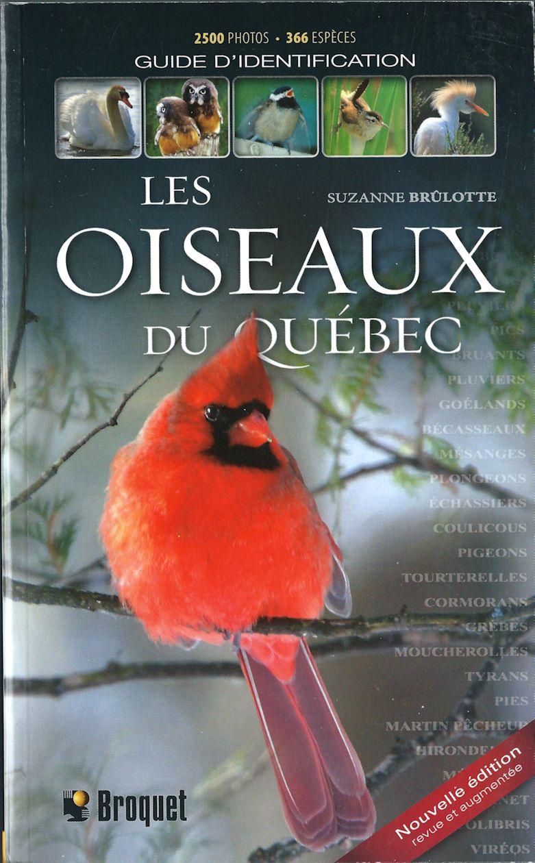 Oiseaux du Québec.jpg