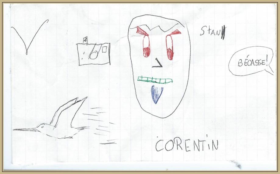 Becasse corentin.jpg