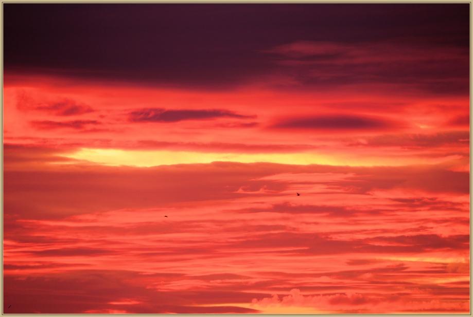 UE8A7984 ciel rouge.jpg