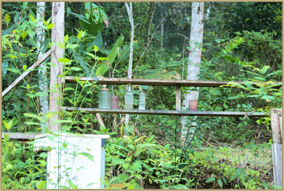 UE8A0247 ruine.jpg