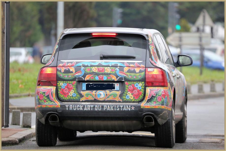 UE8A0277 voiture paon.jpg