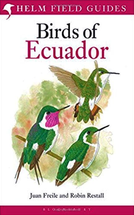 oiseaux d'équateur.jpg